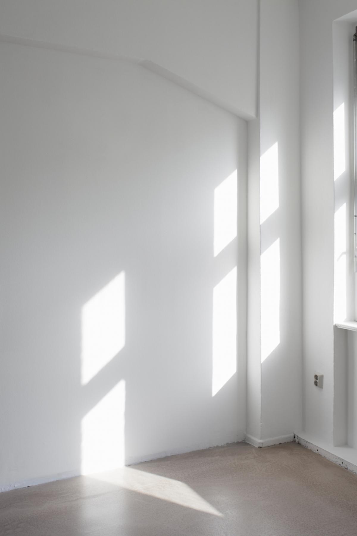 Colonia Nova - Studio 12